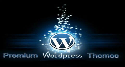 Top 10 Responsive WordPress Themes 2015