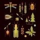 Nature, Insects, Leaves And Tree Icons Vector