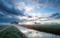 sunrise on Dutch farmland in summer