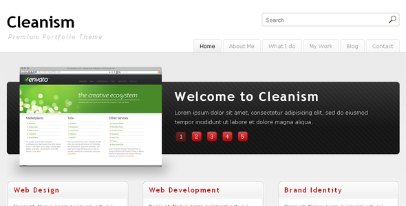 ThemeForest Cleanism 53545