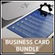 Business Card Bundle 01
