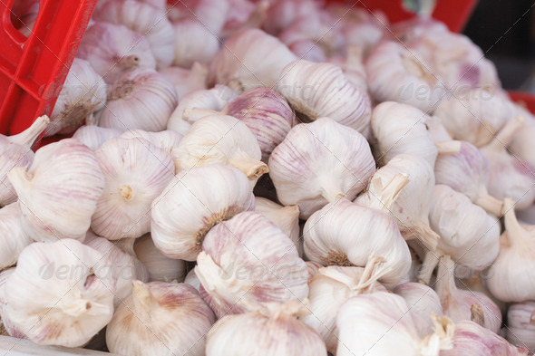 garlic background - Stock Photo - Images