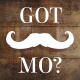 Movember Photo Slideshow