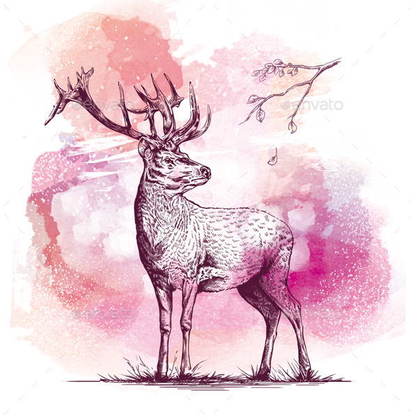 Engraving Deer on watercolor background