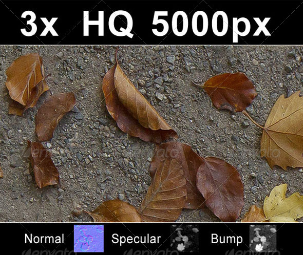 3x Autumn Leaves on Road 1 - 3DOcean Item for Sale