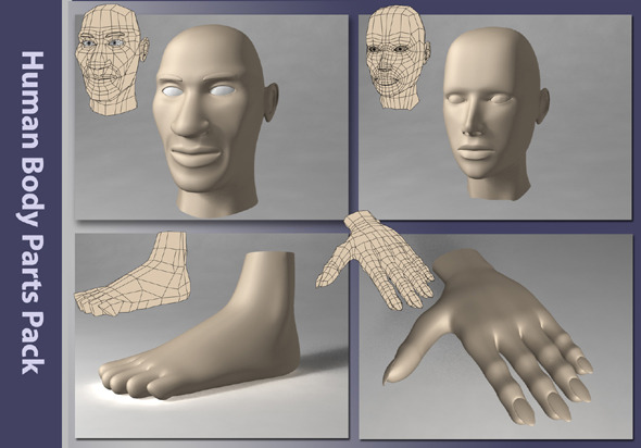 3DOcean Human Body Parts Pack 1366831