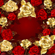 Red and Gold Roses