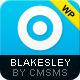 Blakesley - Business Premium & Portfolio WordPress - Corporate WordPress