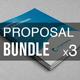 Business Proposal Bundle | Volume 3