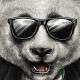 PandaFashionMusic