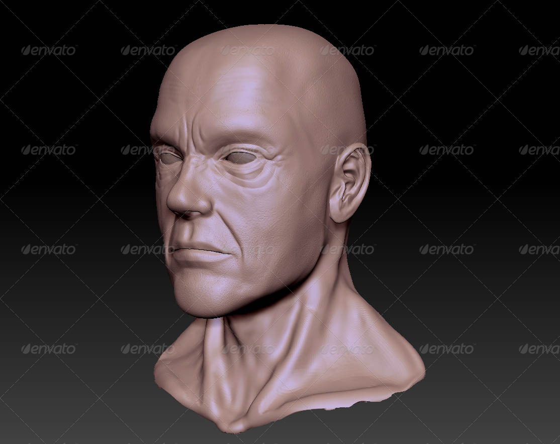 Male Bust - 3DOcean Item for Sale