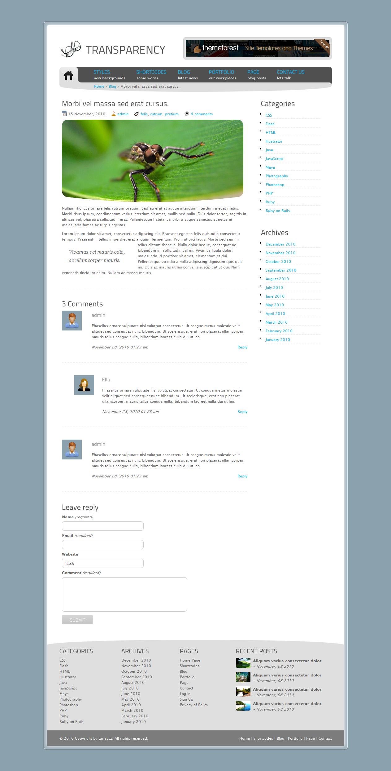 Tranzparency - Wordpress - Blog post - Morbi vel massa sed erat cursus