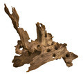 Driftwood for aquarium - PhotoDune Item for Sale