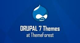 ThemeForest Drupal 7 Premium Themes