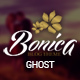 Bonica - Responsive Ghost Blog Theme - ThemeForest Item for Sale