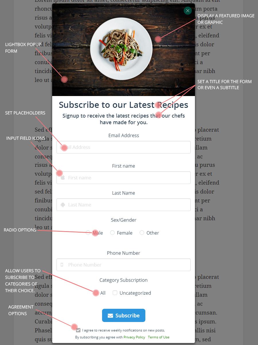 Newsletter Nylon 4