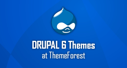 ThemeForest Drupal 6 Premium Themes: The ones I like