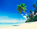 Summer Beach Tropical Paradise Seascape Concept
