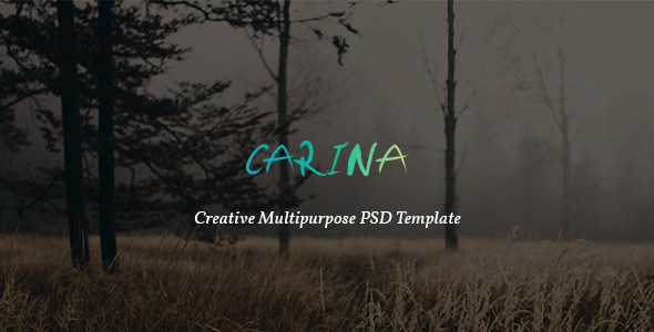 Carina - Creative Multipurpose PSD Template