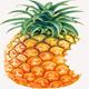 PineappleBD