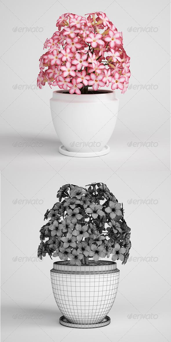 3DOcean CGAxis Flowering Plant in Pot 04 164985