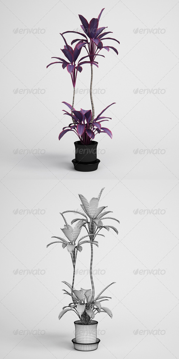 3DOcean CGAxis Potted Plant 13 165159