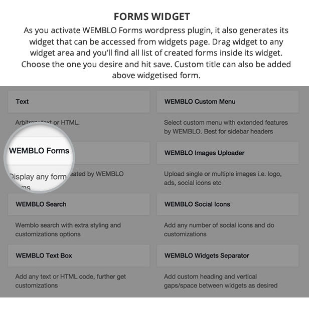 User Friendly Widget for Wemblo Forms