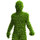 5 Realistic Render Human Forms of Leaves