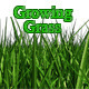 Growing Grass - VideoHive Item for Sale