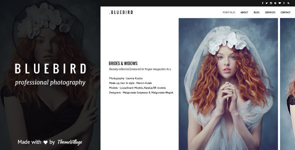 9 - Bluebird - Design for Professional Photographers