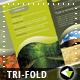Generic A4 Tri-Fold Brochure - GraphicRiver Item for Sale