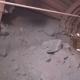 Extracting Ore Miner