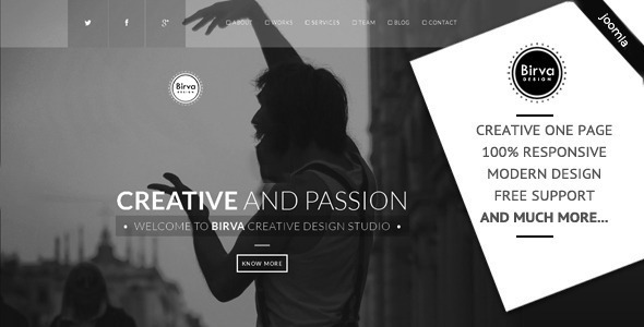 Birva – Creative One Page Joomla Theme (Portfolio)   Php Updated Scripts