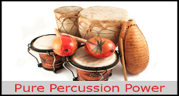 Pure Percussion Power