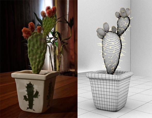 Cactus - 3DOcean Item for Sale