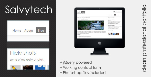 Salvytech - Clean professional template