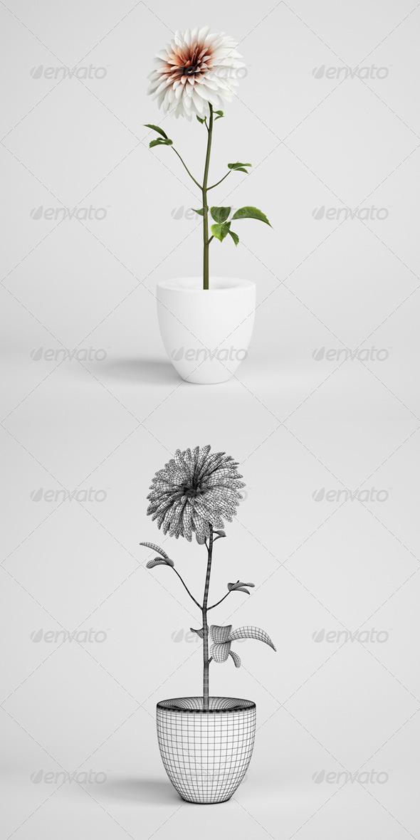 CGAxis Flower in Vase 18 - 3DOcean Item for Sale