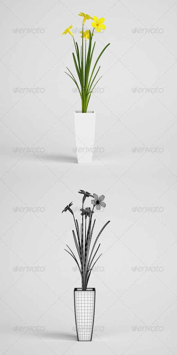3DOcean CGAxis Potted Flowering Plant 20 168220