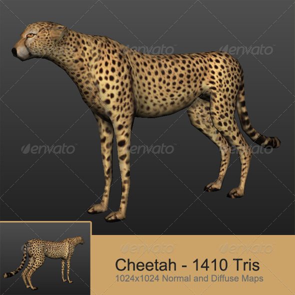 Cheetah - 3DOcean Item for Sale