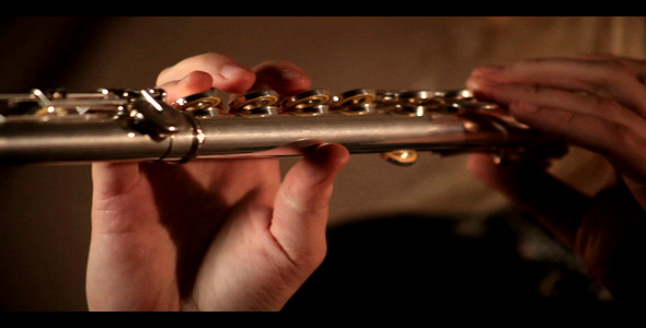 Download Flute Playing Close Up nulled download