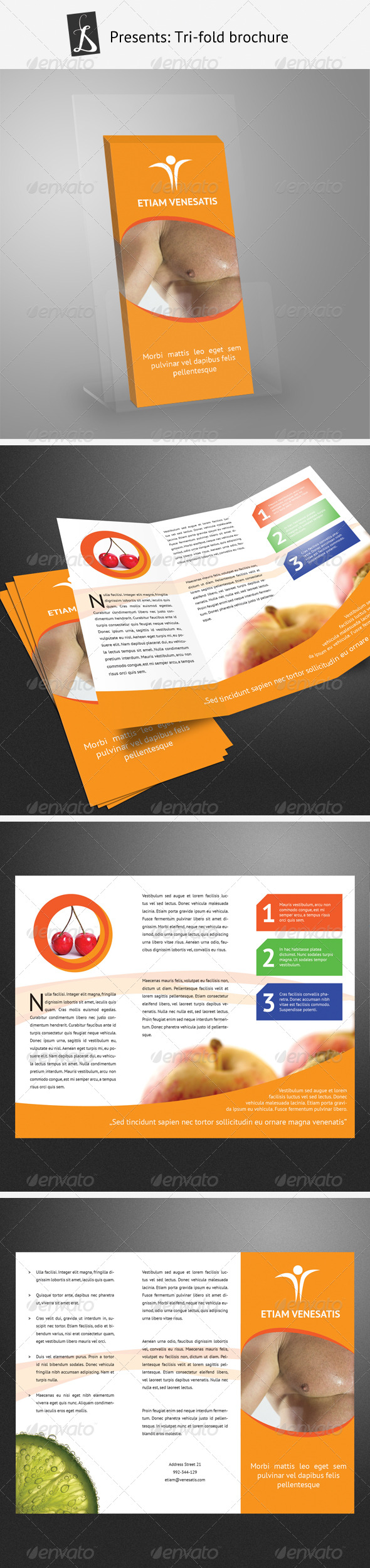 GraphicRiver Tri-Fold Brochure 168875