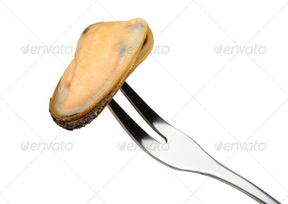 mussel on a fork - Stock Photo - Images