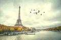Window to Paris.