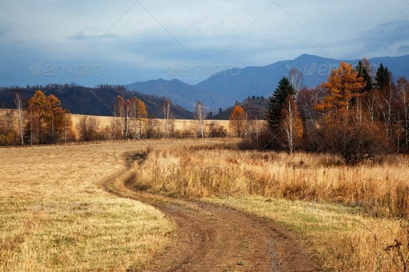 Autumn landscape with rural road - Stock Photo - Images