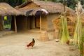 nepalese farm - PhotoDune Item for Sale