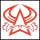 Bull Star Logo