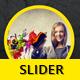 Business Slider V53