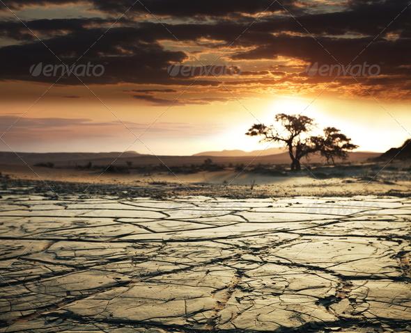 PhotoDune Desert 1434634