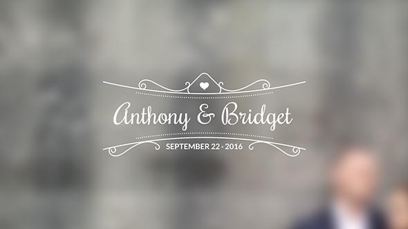 Download 20 Wedding Titles - vol. 03 nulled download
