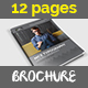 Simple Brochure Catalog Indesign Template – 12 Pages
